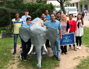 World Elephant Day 2017-UB CBE graduate students helped staffer Lori DuVall re-make the UB Bull into an elephant to raise awareness for elephant welfare.