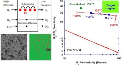 Sorption Enhanced Mixed Matrix Membranes for H2 Purification and CO2 Capture.