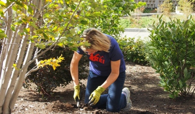 Liesl Folks dons some garden gloves and digs in!