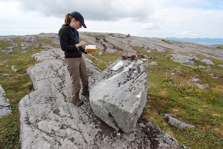 Alia Lesnek surveys rocks in Alaska.