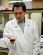 Ruogang Zhao in a the lab wearing a white lab coat holding a microtissue array.