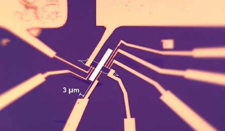 A microscopic images shows eight electrodes around magnet and graphene.